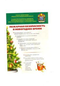 Информация о соблюдении правил пожарной безопасности в Новогоднее время!
